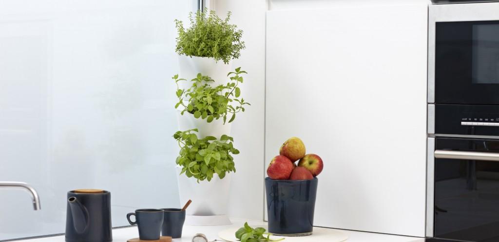 Indoor Corner Garden