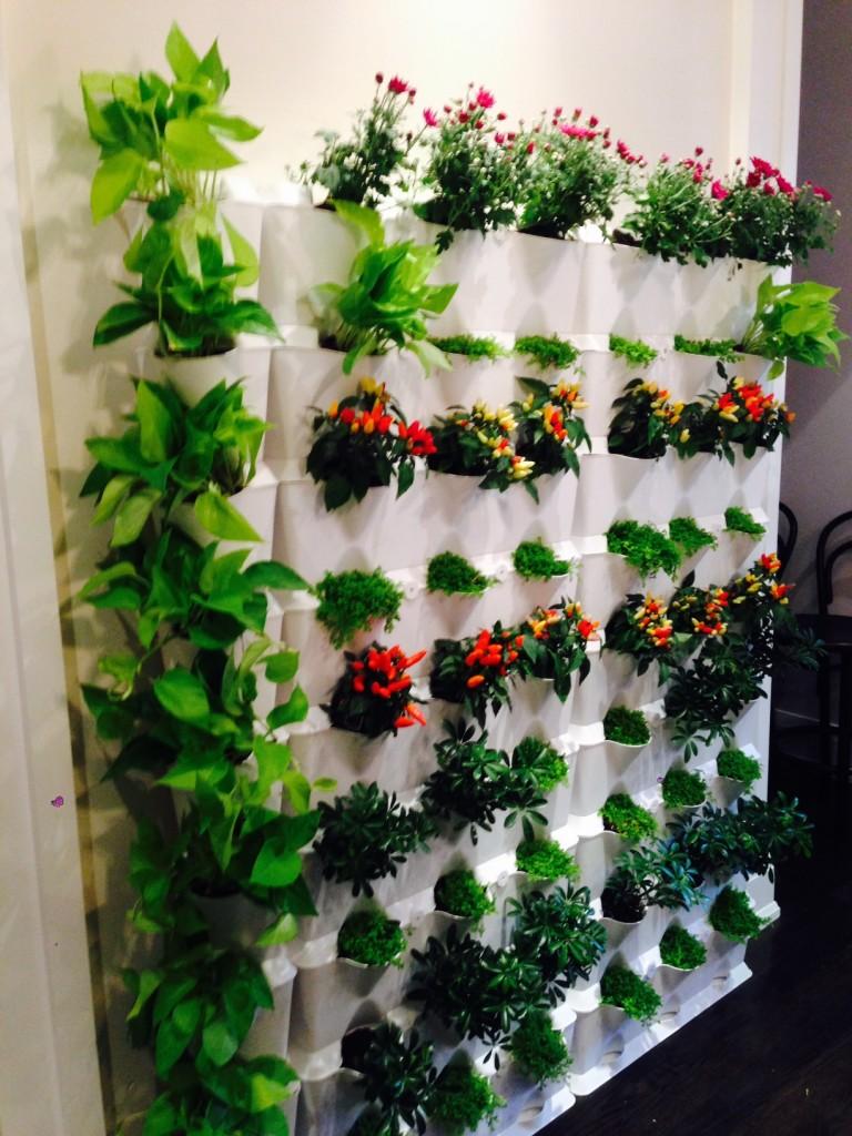 Vertical Gardening Brings Your Walls To Life Minigarden