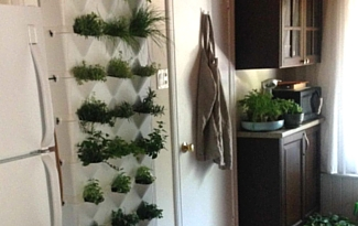 Minigarden in Action: Kim M.'s Vertical Garden