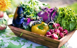 What To Do With Your Herb & Vegetable Harvest