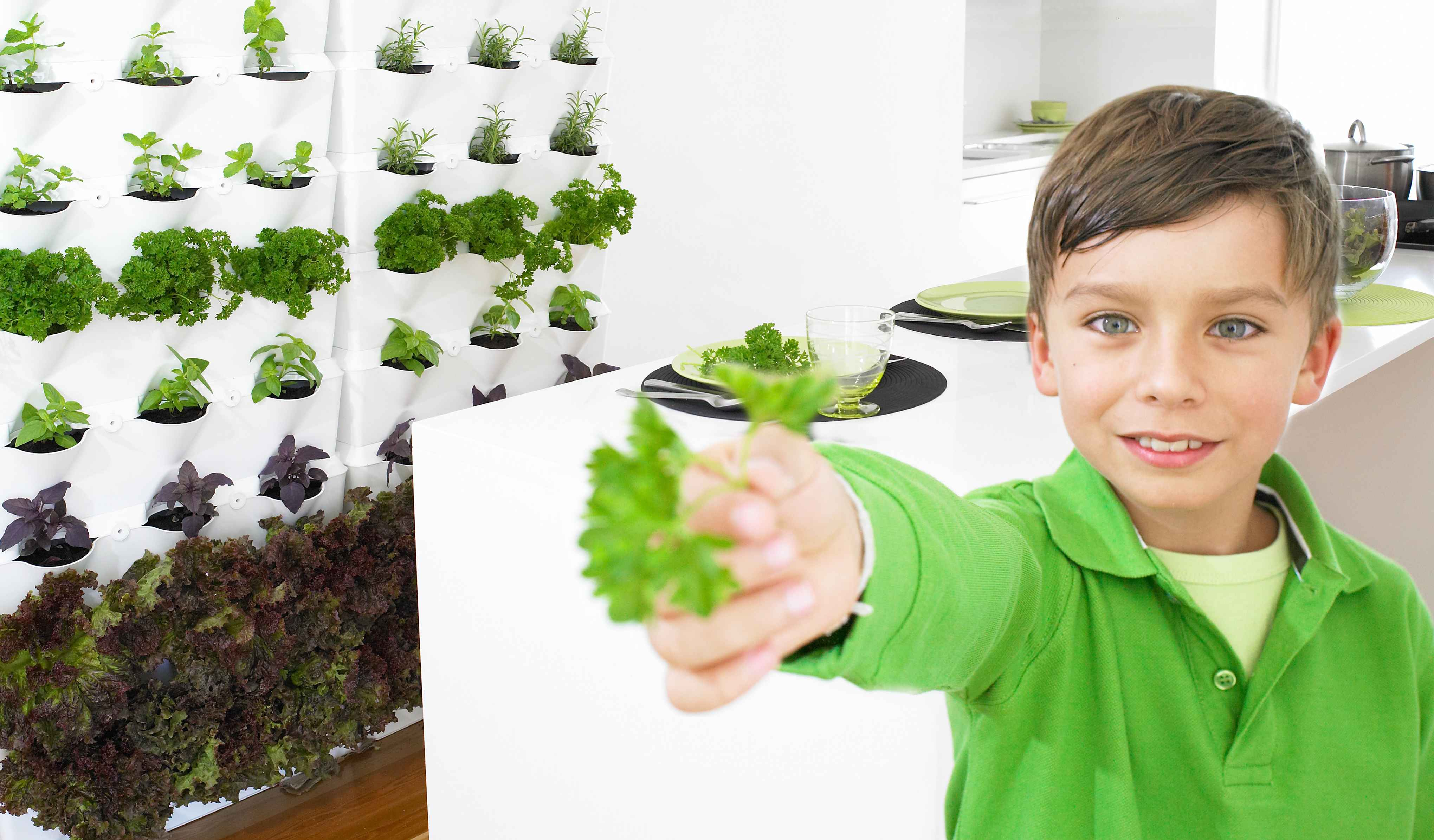Kid With Parsley